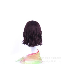 Unprocessed indian women remy virgin human hair wig for black women