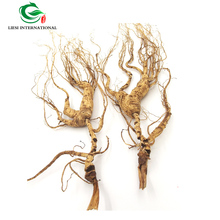 Chinese ginseng <strong>tea</strong>/Herba dried wild ginseng root/raw ginseng bulk package GradeA