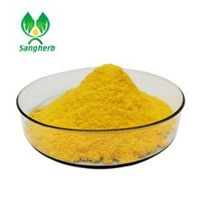 african mango seed extract powder/turmeric extract/curcumin wholesale