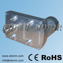 12V flat small gear type electric motor