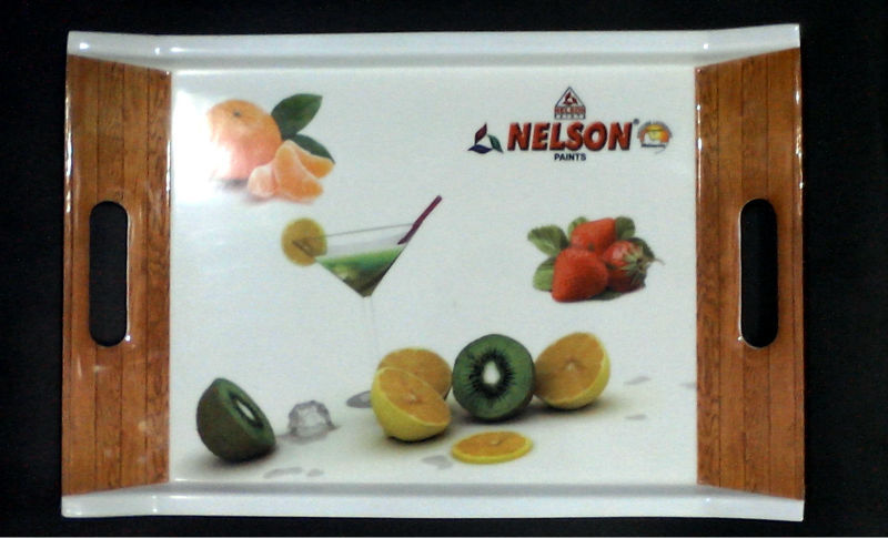 Nelson Paint Promotional Tray