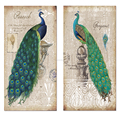 "Classic Style Two Peacock Painting Canvas Wall Art Framed Animal Drawing Picture Print(20""x40""x2pcs)Wholesale Ready to Hang"
