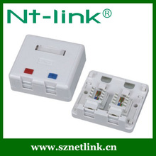 Dual Port Angled Faceplate with 2 PCS RJ45 Jack