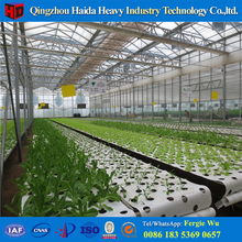 Agricultural plastic film greenhouse for South Korea