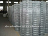Galvanized welded wire mesh(Anping Real Manufacturer)