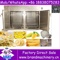 Best sales electric professional gas industrial food dehydrator machine used