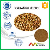 NSF-cGMP Health Care Loss Weight Flavonoids Buckwheat Extract