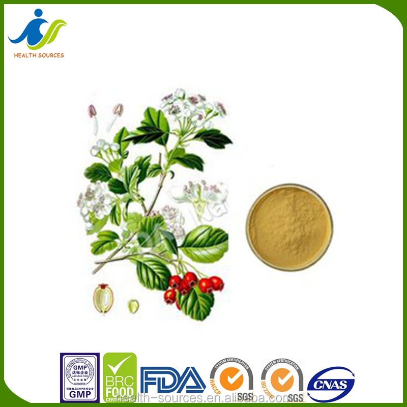 100% natural Mucuna Pruriens powder plant extract