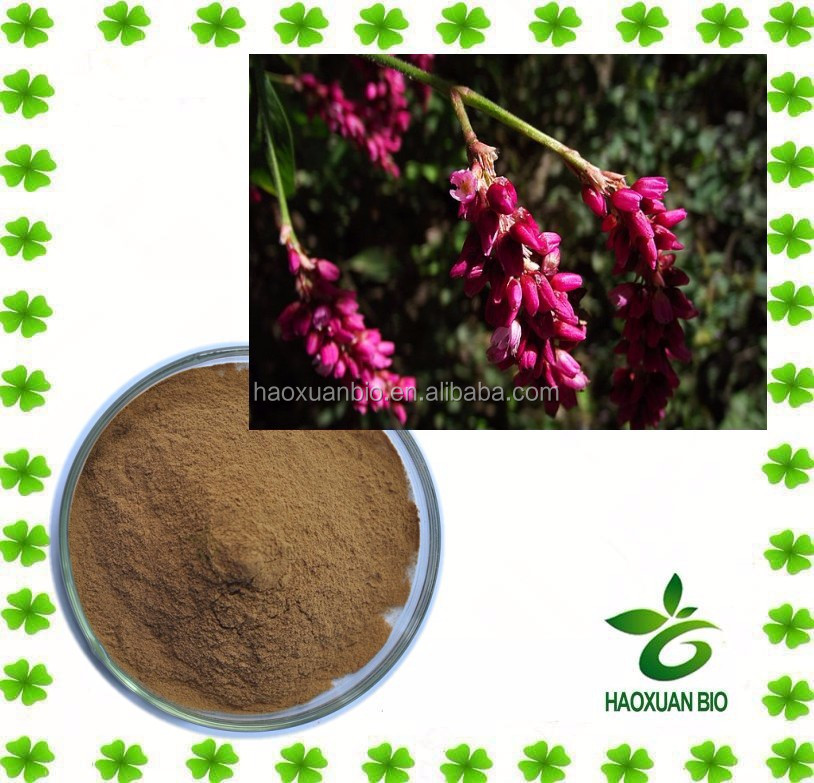 Amaranth Oil Extract/Brown Fine Powder Liquid Plant Extract