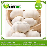 Garlic In Organic Vegetables