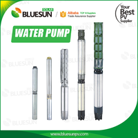 Bluesun 24v good quality lorentz submersible solar water pump for agriculture