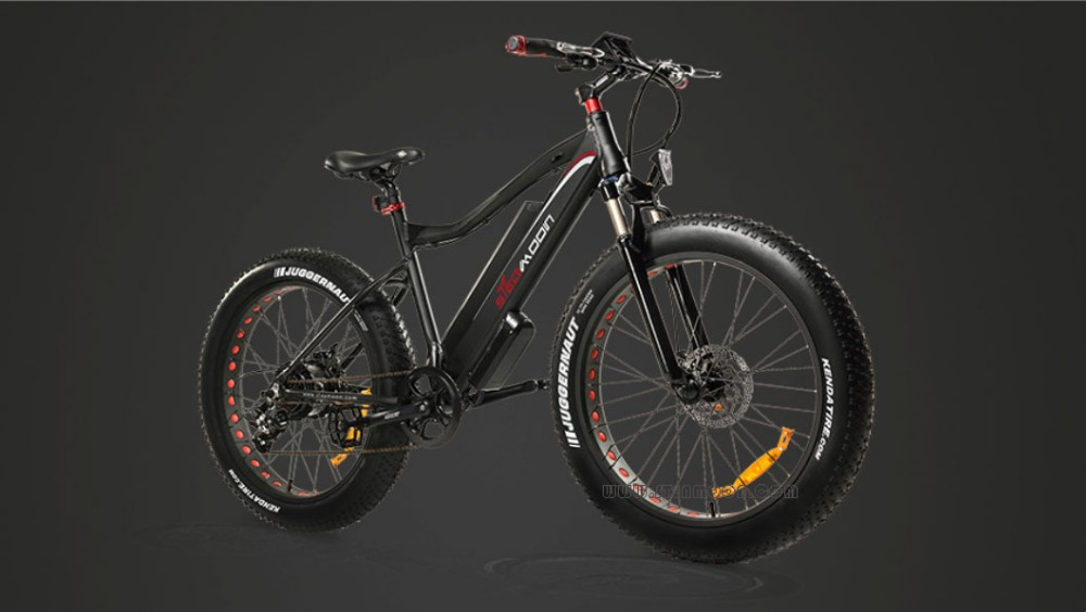 fashion snow ebike fat tire mountain electric bicycle e bike