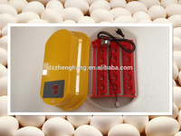 2015 Atomatic mini parrot egg incubator to hatch eggs high quality and inexpensive( 15 Eggs Incubators)
