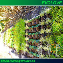 Green wall vertical planting system