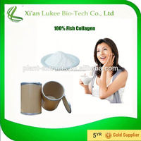 High quality fish collagen powder/salmon fish collagen powder