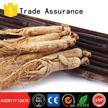Hot sales Manufacture pure ginseng plus hot sell