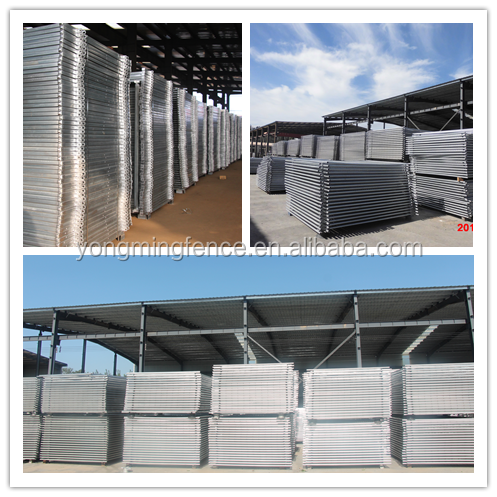 Australia cattle yard panel