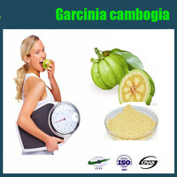 Natural Weight loss ingredient supplement Garcinia Cambogia Extract Garcinia Cambogia Fruit Extract