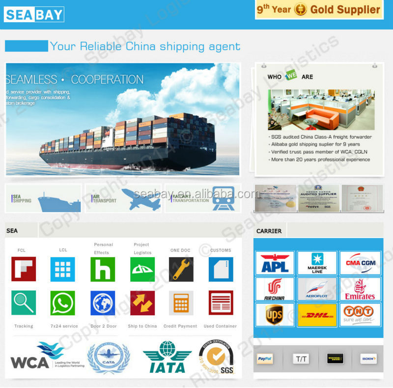Professional worldwide logistics tracking in china with rich experience
