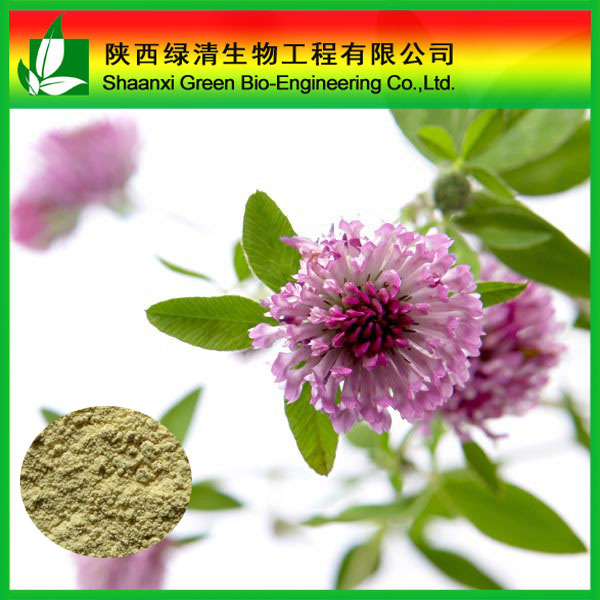 Natura Red Clover Extract Formononetin powder CAS No : 485-72-3