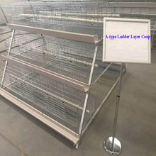 Commerical Small A-type Ladder Chicken Cage For Sale