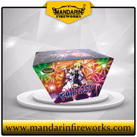 big cake fireworks with 49shots, good for wedding ceremony and new year celebration