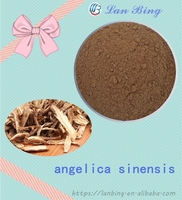 High quality 100% natural angelica extract angelica sinensis root extract dong quai powder