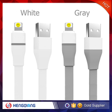 Best quality USB Data Cable for iphone,Standard USB 2.0 port USB date cable for apple,paypal