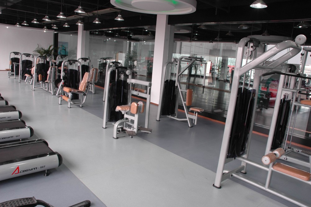 Gym room used professional commercial roman chair buy