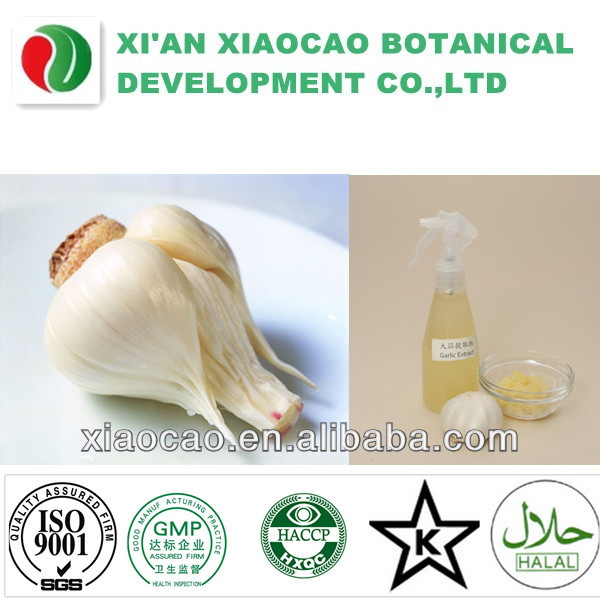 Factory provide 100% pure natural lipid garlic extract