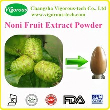Free sample Noni Fruit Extract/Noni Fruit Extract Powder/morinda citrifolia p.e.