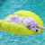 Dog pool float lounger