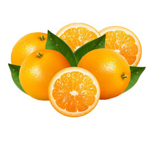 Wholesale best price orange fruit