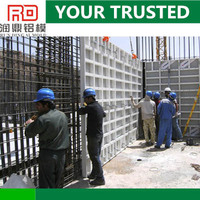 RD shearing force wall formwork for concrete wall