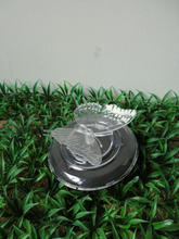 ABS and PS Transparent Butterfly Solar led garden light