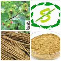 ISO,BV,Kosher Certificate Factory Supply Hight Quality Burdock P.E 4:1 5:1 10:1 20:1