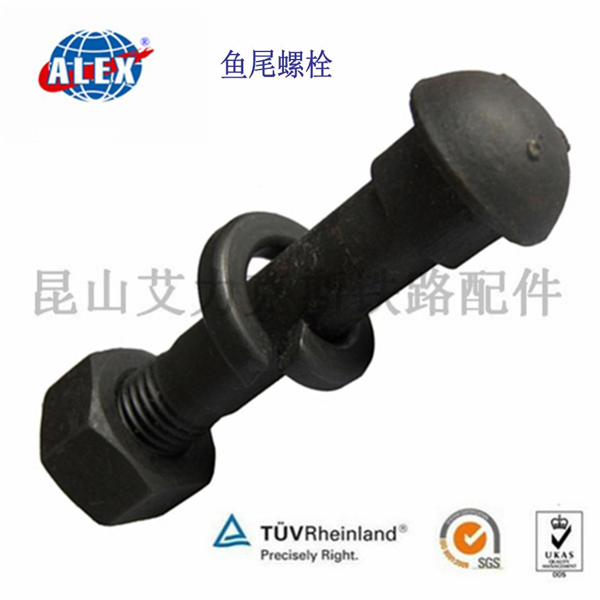 high strength 10.9 grade railway Fish bolt with railway coil spring washer in China
