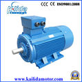 Y2 series 100 kw three-phase ac copper coil motors