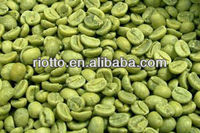 Low price guaranteed quality pure green coffee bean extract
