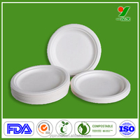 China nontoxic harmless custom pizza slice tray