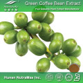 China Green Caffee Bean Extract Chlorogenic Acid