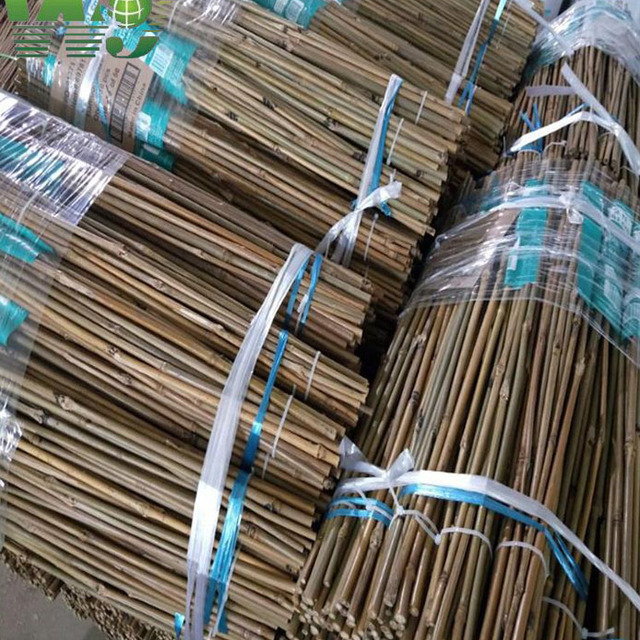 WY-135 2017 Raw materials bamboo poles agricultural products distributors