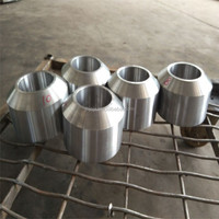 stainless steel 1 inch steel Threadolet