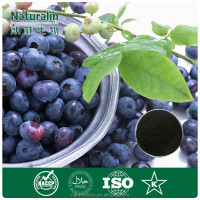 Anthocyanin/Billberry extract/OPC/Anti-age