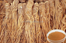 Angelica sinensis extract powder,Dong Quai root extract,Chinese angelica