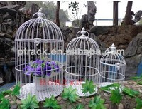 140X250mm CHROME BIRD CAGE PF-E588