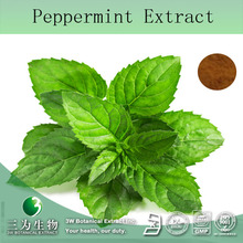Free Sample Pharmaceutical Raw Material Peppermint Extract 10:1