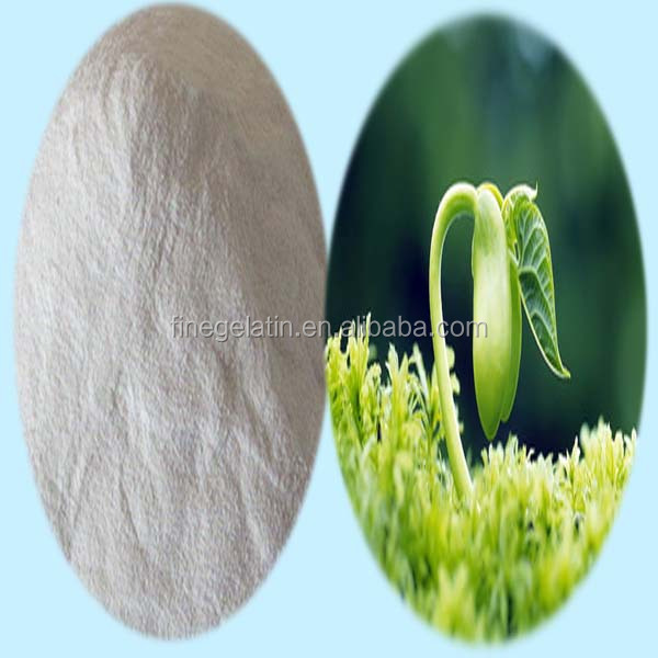 private label hydrolyzed collagen protein powder for fertilizer