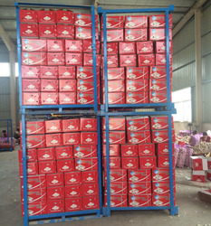Chinese wholesale natural fresh garlic for sale to importers