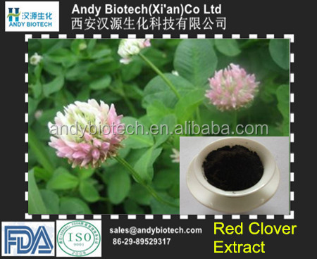 New Arrival 100% Pure Organic Red Clover Extract